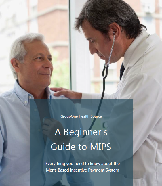 The Beginners Guide to MIPS