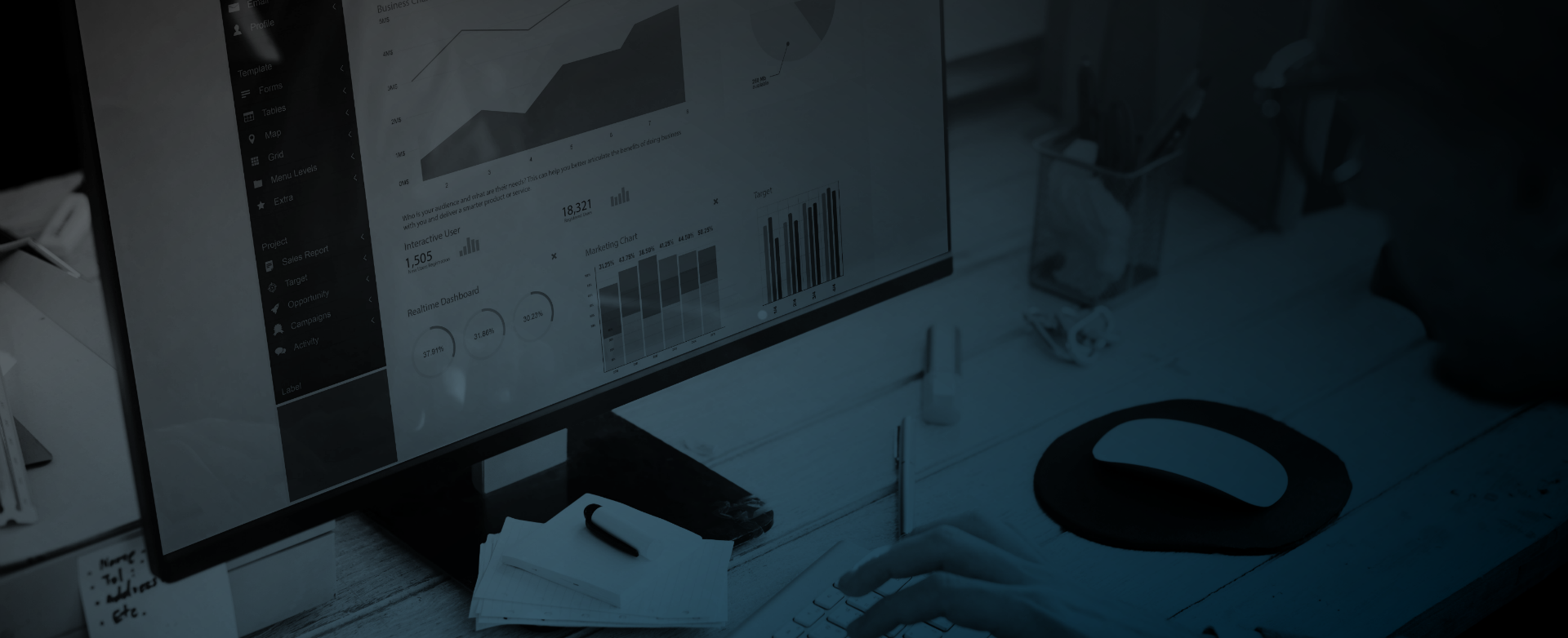 Revenue Cycle Management and EHR Services