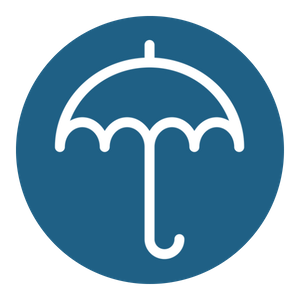 life insurance icon.png